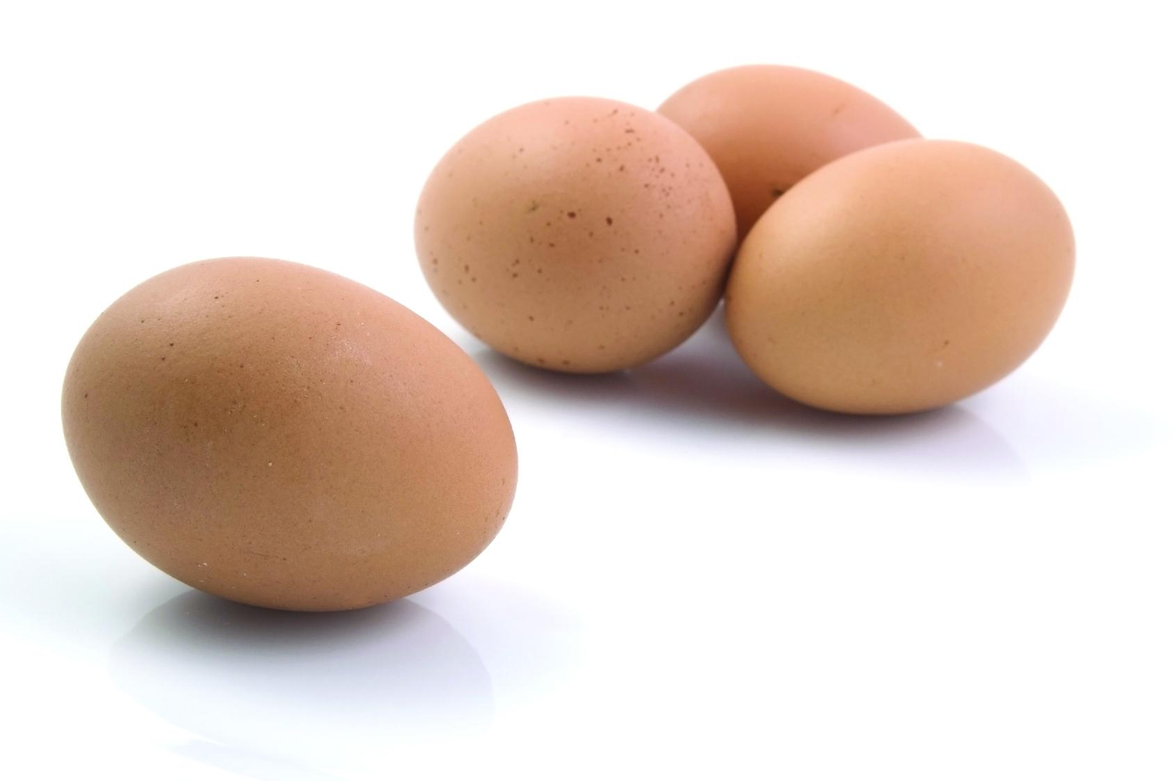 Cucinare un semplice uovo, a volte e per i non addetti ai lavori può risultare difficile, vediamo come cuocere le uova sode senza romperle.