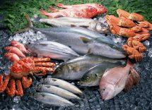 Tempo di conservazione pesce fresco in frigorifero