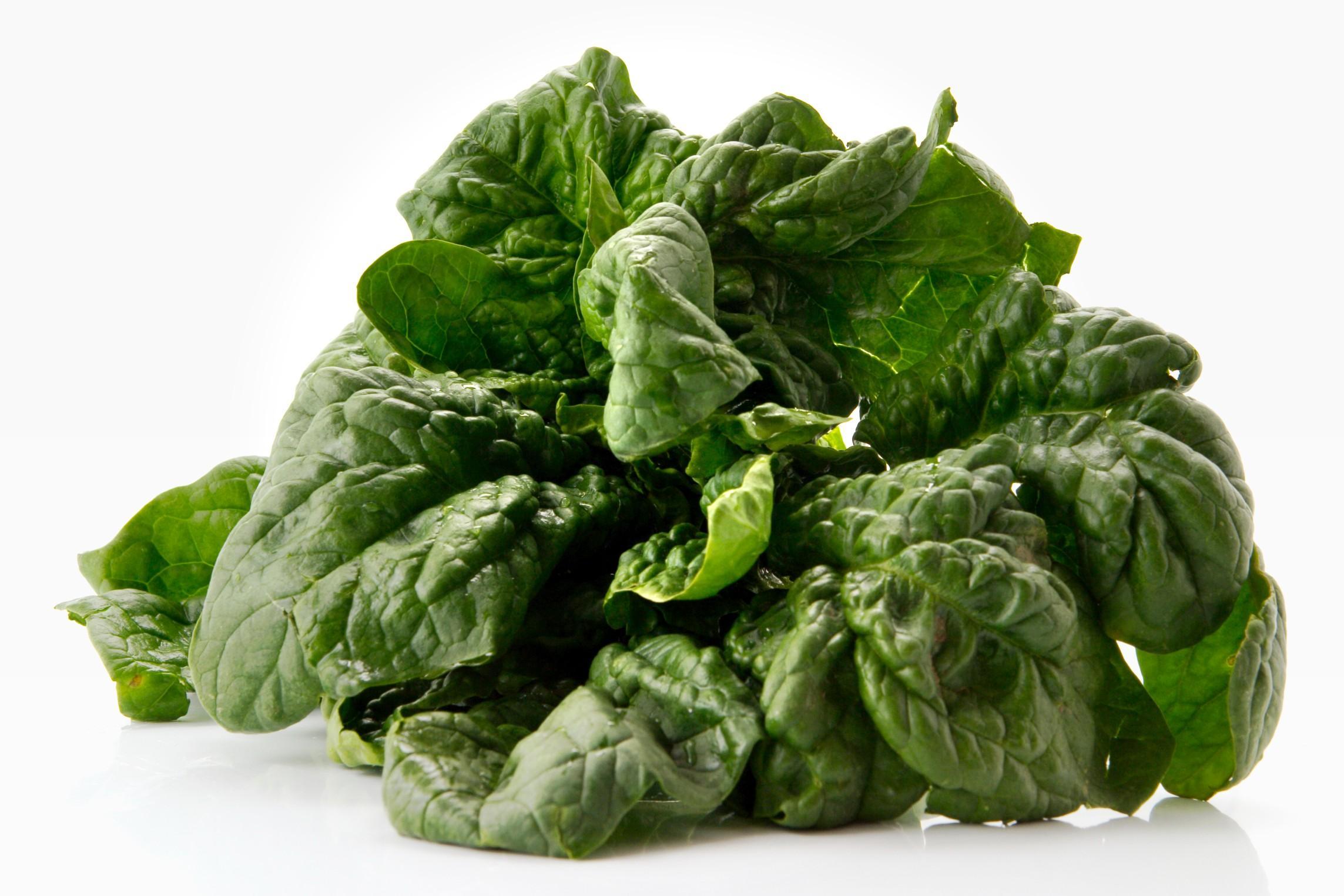 20 Ricette per cucinare gli spinaci