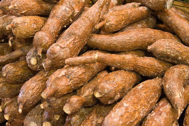 come cucinare la manioca