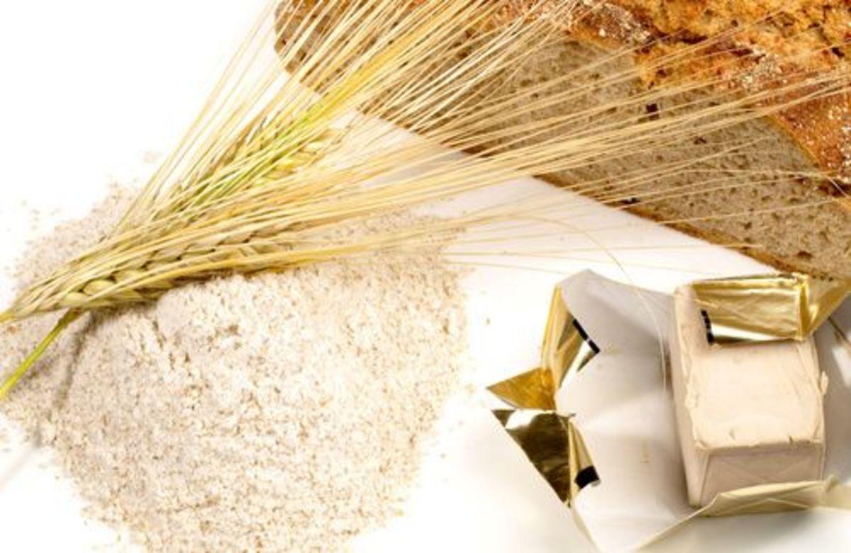 ricette germe di grano