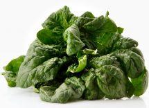 10 ricette vegetariane con gli spinaci