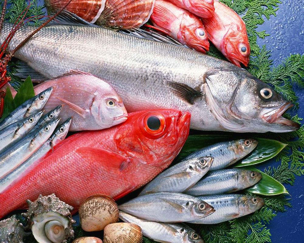 pesci 1