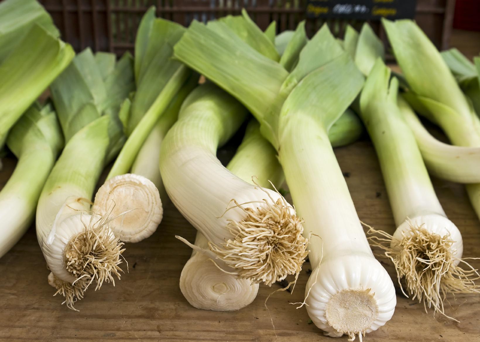 10 ricette vegetariane con il porro