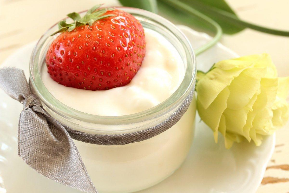 cos'è lo yogurt