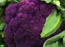 Cavolfiore viola: ricette, idee e 10 modi per mangiarlo