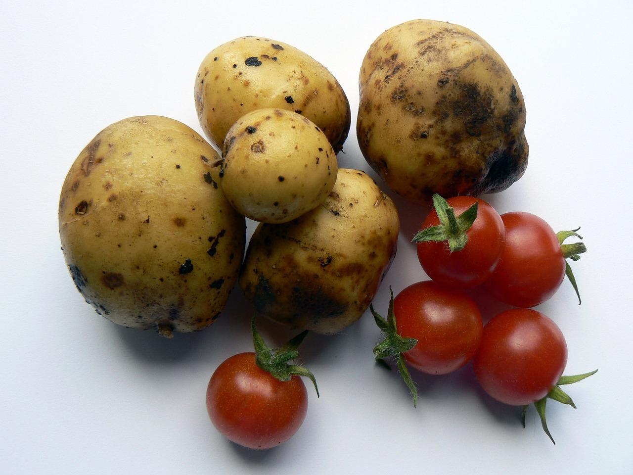 patate al forno pomodorini