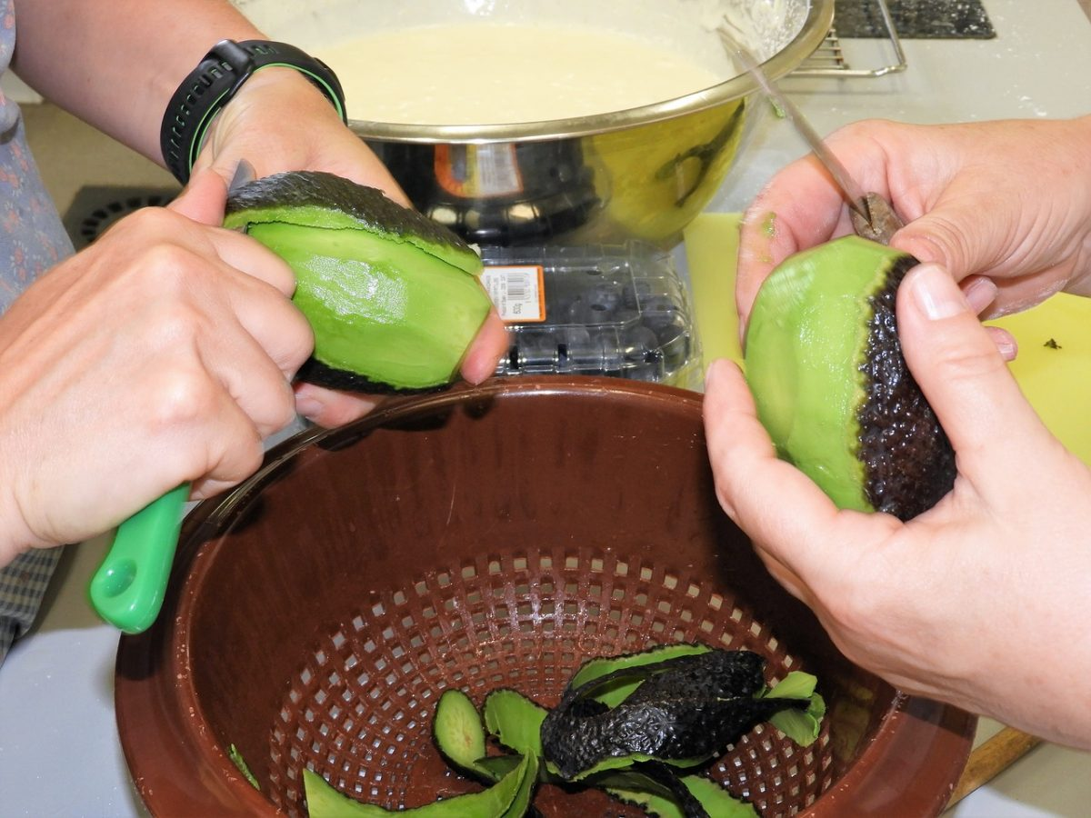 avocado per salmone