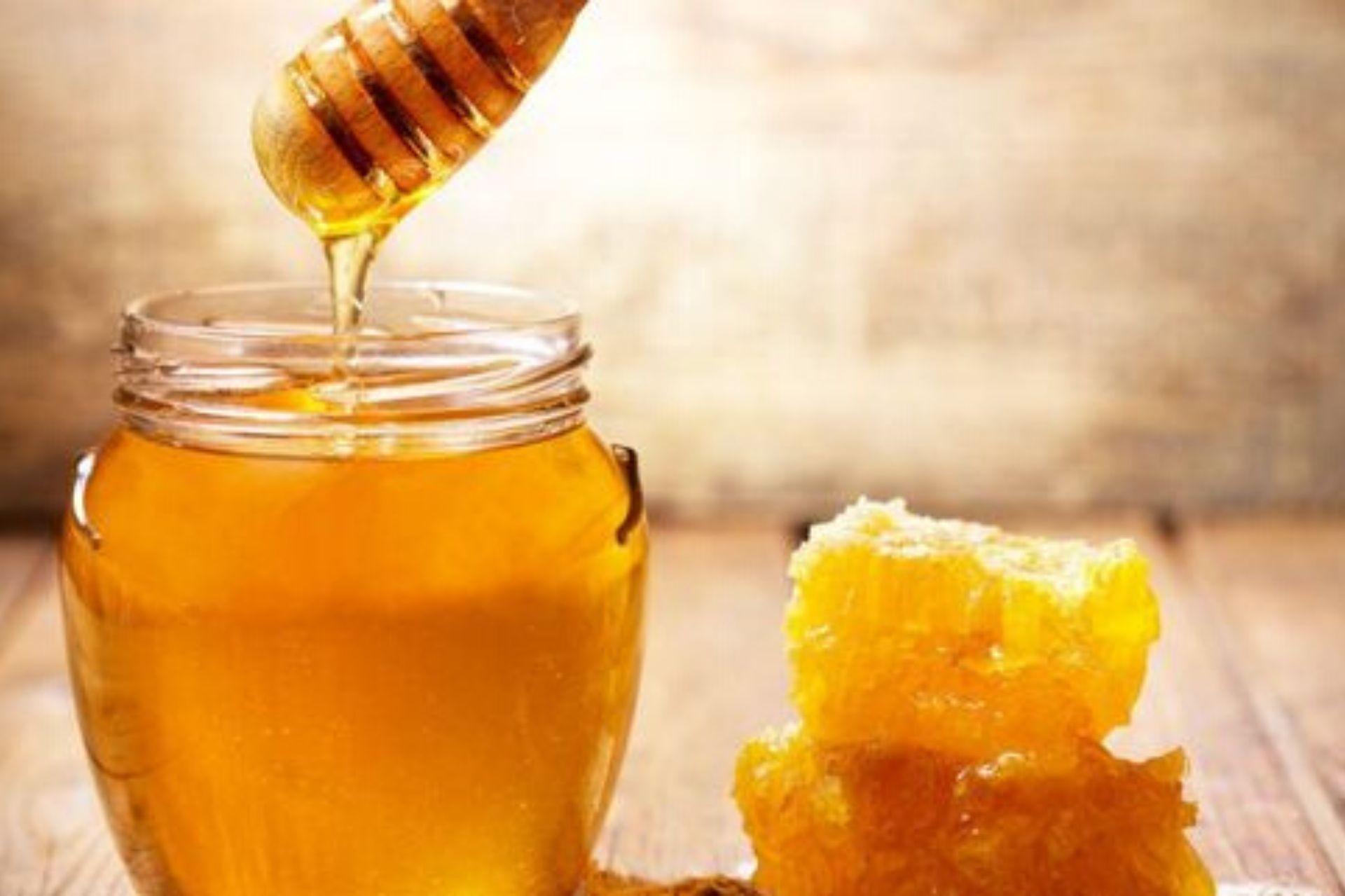 miele di melata proprieta e benefici