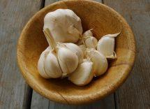 Mangiare aglio crudo a cosa fa bene