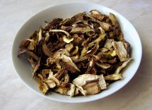 ragù di funghi porcini secchi