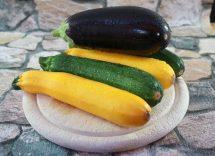 Involtini di melanzane zucchine e speck