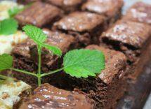 torta vegan menta cioccolato